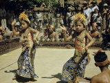 Young Legong Dancers Concentrate on their Angular Movements