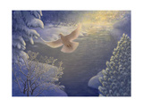 White Dove in Winter Landscape