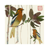 Pair of Birds on Branches
