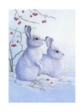 Two Bunnies in the Snow