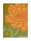 Orange Flower with Green Background