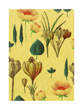 Flowers on Tan Background