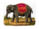 Jumbo the Elephant