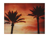 Palm Trees with Sun