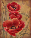 Poppy Passion I