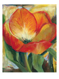 Summer Tulips I