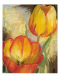 Summer Tulips II