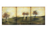 Autumnal Meadow II