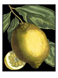 Fragrant Citrus II