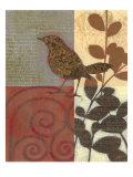 Paisley Sparrow