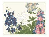 Japanese Flower Garden III