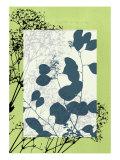 Translucent Wildflowers VIII