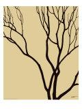Bare Tree I