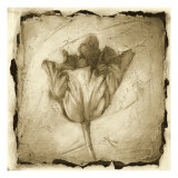 Floral Impression II