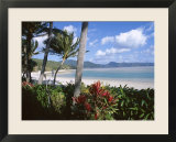 Resort Beach  Hayman Island  Whitsundays  Queensland  Australia
