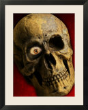 Human Skull with Wooden Eye