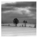Winter Landscape I