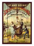 Excelsior Ginger Ale