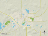 Political Map of Waupaca  WI