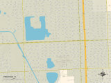 Political Map of Pinewood  FL