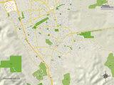 Political Map of Pleasanton  CA