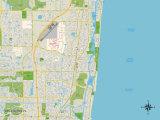 Political Map of Boca Raton  FL