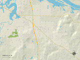 Political Map of Priceville  AL