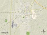 Political Map of Starkville  MS