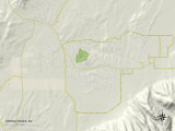 Political Map of Spring Creek  NV