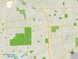 Political Map of Woodridge  IL