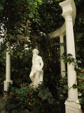 Statue in Garden  Magnolia Plantation and Gardens  Charleston  Charleston County  South Carolina