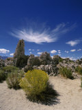 Tufa Rock Formations on a Landscape  Mono Lake  California  USA