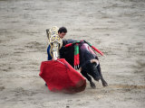 Matador and a Bull in a Bullring  Lima  Peru