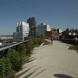Buildings in a City  High Line Park  Manhattan  New York City  New York State  USA