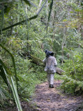 Photographer Walking on a Trail in a Rainforest  Andasibe-Mantadia National Park  Madagascar