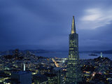 Buildings Lit Up at Dusk  Transamerica Pyramid  Coit Tower  San Francisco  California  USA
