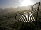 Shropshire  Ludlow  Wrought Iron Benches on Whitcliffe Common on a Misty Spring Morning  England