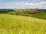 Monteriggioni  Chianti  Italy