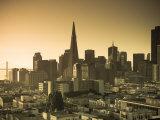 California  San Francisco  Downtown and Transamerica Building  USA