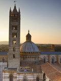 Duomo  Siena  Tuscany  Italy