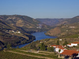 Douro Valley  Pinhao  Quinta Nova De Nossa Senhora Do Carmo Estate - First Wine Hotel in Portugal