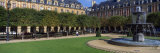 Fountain and Trees in Front of a Building  Place Des Vosges  Paris  Ile-De-France  France