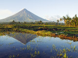 Luzon Island  Bicol Province  Mount Mayon  Near Perfect Volcano Cone  Philippines