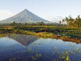 Luzon Island  Bicol Province  Mount Mayon  Near Perfect Volcano Cone  Philippines