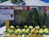 Coconut Daiquiri Stall at Port Lucaya on Grand Bahama  the Bahamas