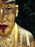 Face of Golden Buddha Statue - One Among Many at Ten Thousand Buddhas Monastery  New Territories
