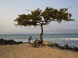 Acacia Tree on the Edge of the City of Sao Tomé  Where Young People Go to Bathe