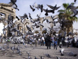 Feeding Pigeons in Front of Remains of Roman Western Temple Gate Outside Umayyad Mosque  Damascus