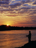Zambezi National Park  Sausage Tree Camp  Fly-Fishing for Tiger Fish at Sunset on River  Zambia
