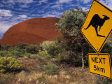Alice Springs  Traffic Sign Beside Road Through Outback  Red Rocks of Olgas Behind  Australia